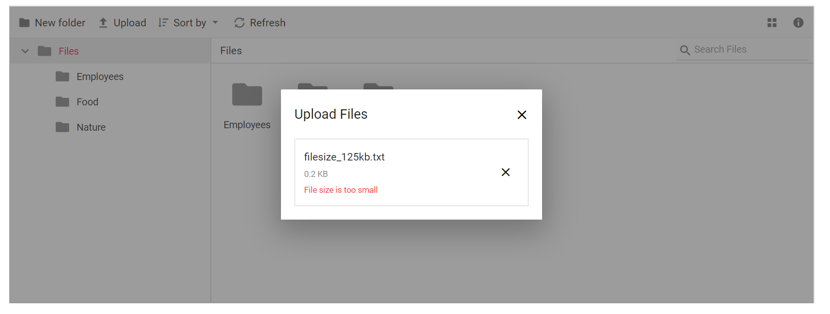 FileManager upload customization